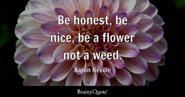Be Honest Nice A Flower Not Weed