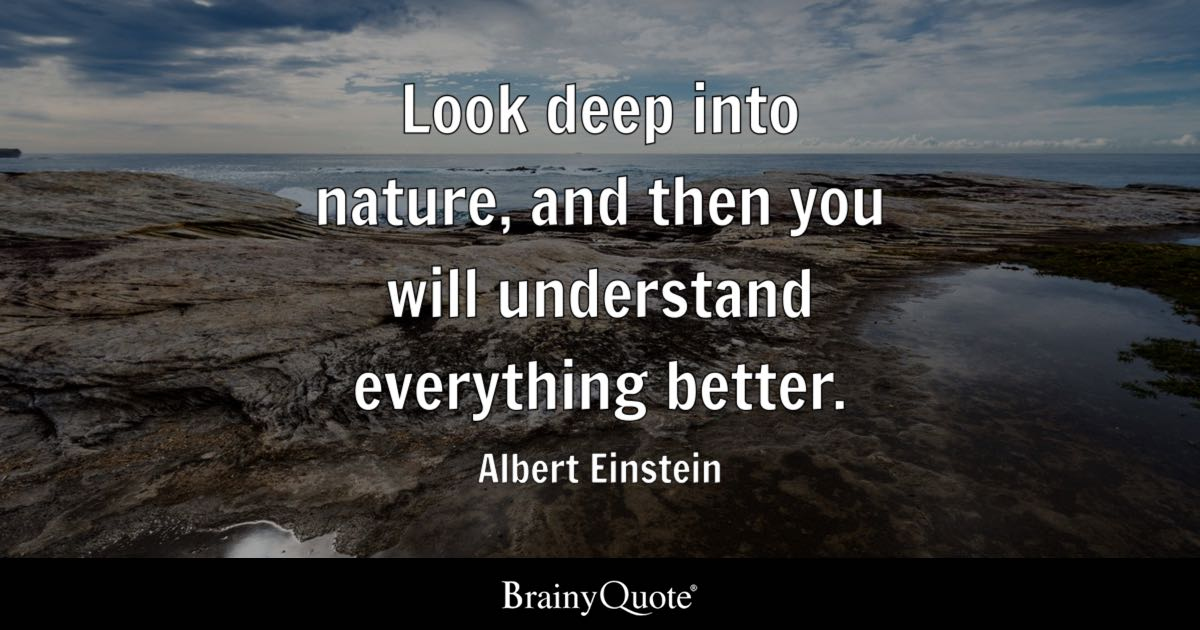 Top 10 Nature Quotes Brainyquote