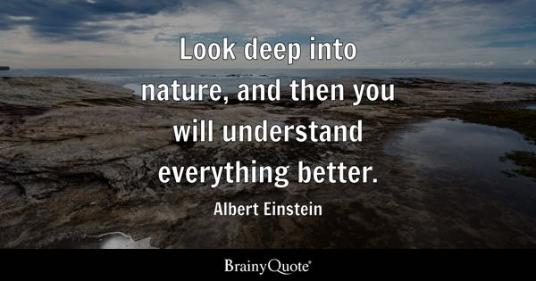 View Quotes Custom Nature Quotes BrainyQuote
