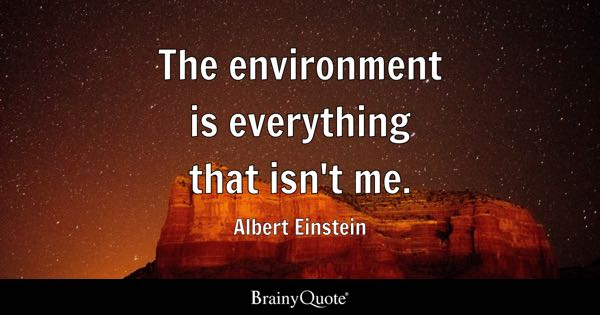 Environmental Quotes Brainyquote