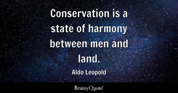 Conservation Quotes - BrainyQuote