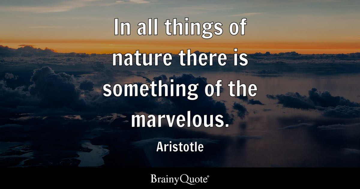 Aristotle In All Things Of Nature There Is Something Of The