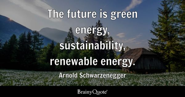 The future is green energy, sustainability, renewable energy. - Arnold Schwarzenegger