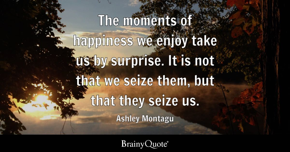 Ashley Montagu The Moments Of Happiness We Enjoy Take Us By