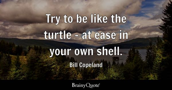 Try to be like the turtle - at ease in your own shell. - Bill Copeland