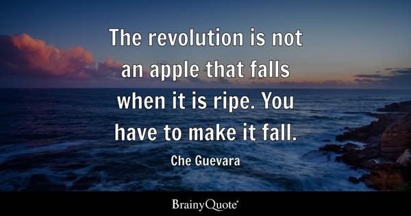 The revolution is not an apple that falls when it is ripe. You have to make it fall. - Che Guevara