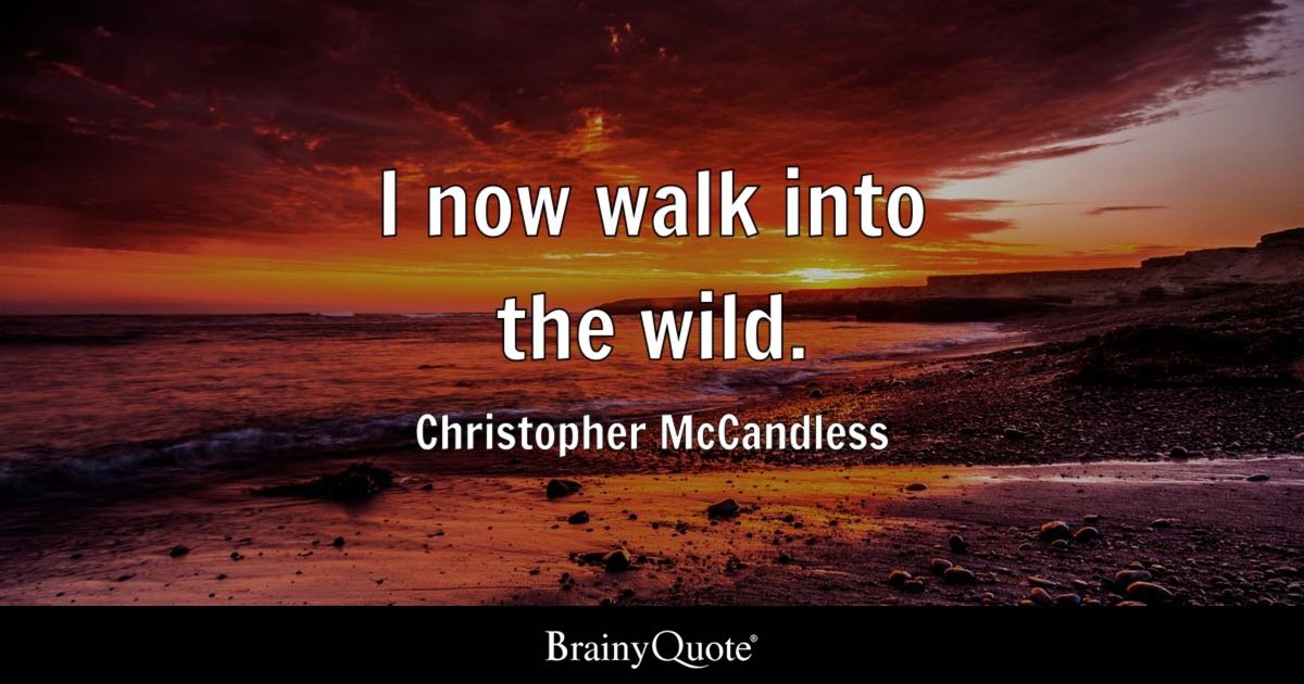 Into The Wild Quotes Inspiration I Now Walk Into The Wild Christopher Mccandless  Brainyquote