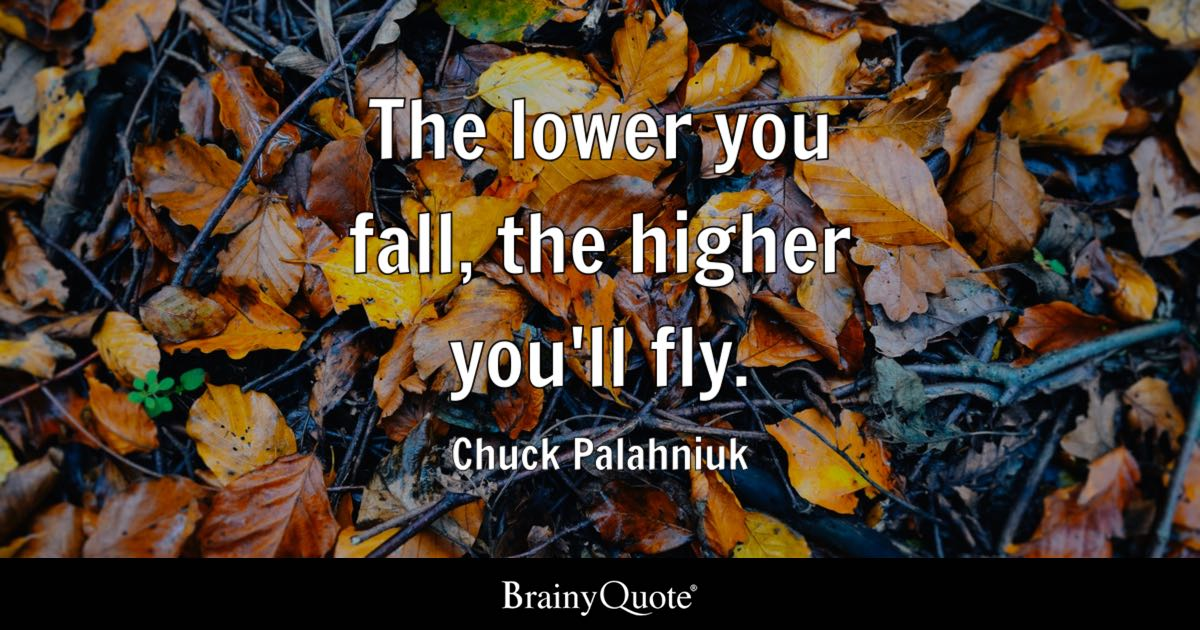 The lower you fall, the higher you'll fly. - Chuck Palahniuk