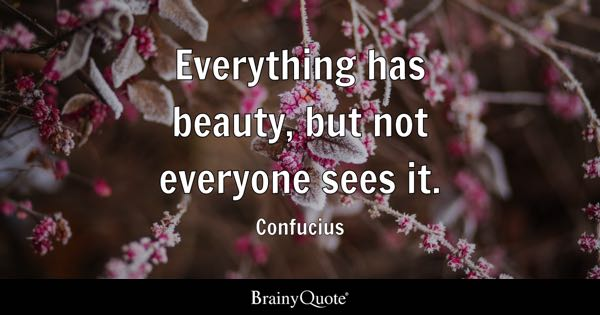 Beauty Quotes Brainyquote