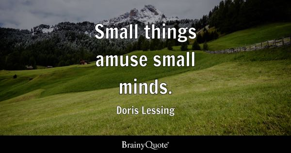 Small things amuse small minds. - Doris Lessing