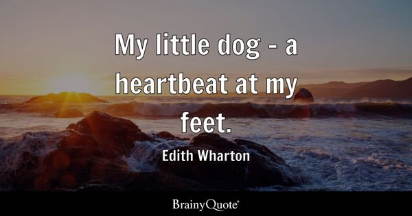 Feet Quotes Brainyquote