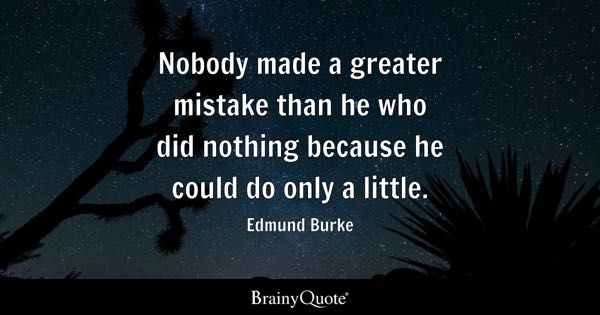 Nobody made a greater mistake than he who did nothing because he could do only a little. - Edmund Burke