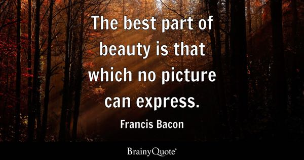 The best part of beauty is that which no picture can express. - Francis Bacon
