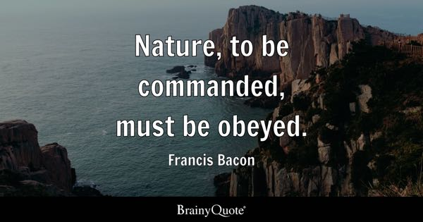 Francis Bacon Quotes Page 2 - BrainyQuote