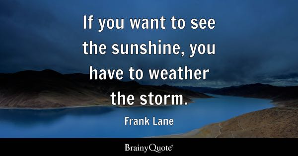 If you want to see the sunshine, you have to weather the storm. - Frank Lane