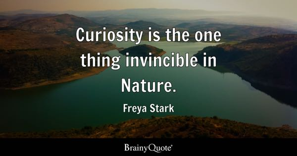 Curiosity is the one thing invincible in Nature. - Freya Stark