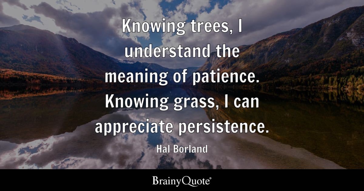 Hal Borland Knowing Trees I Understand The Meaning Of Patience