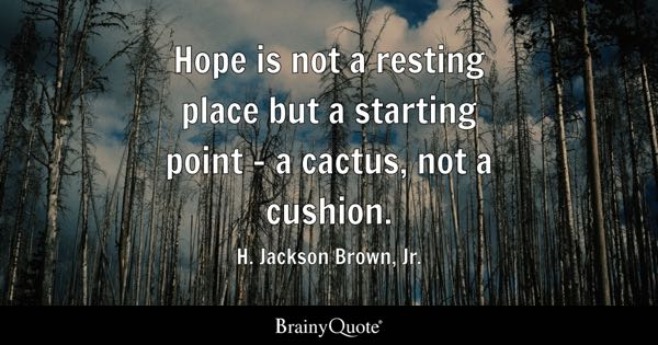 Hope is not a resting place but a starting point - a cactus, not a cushion. - H. Jackson Brown, Jr.