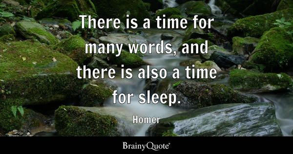 There is a time for many words, and there is also a time for sleep. - Homer