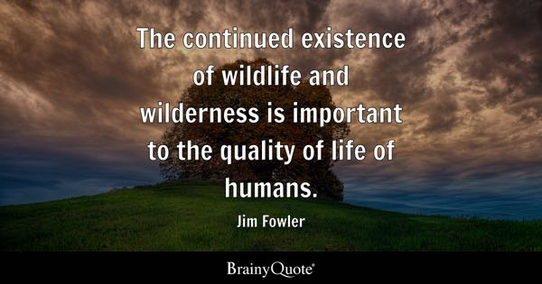 Wilderness Quotes Brainyquote