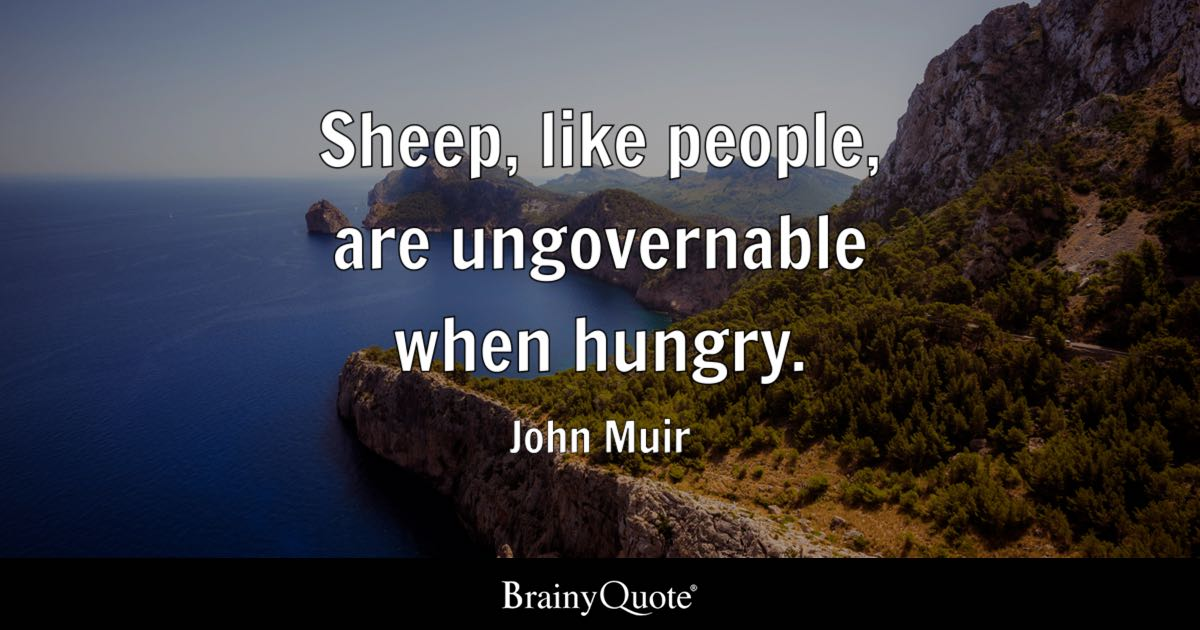 John Muir Sheep Like People Are Ungovernable When Hungry