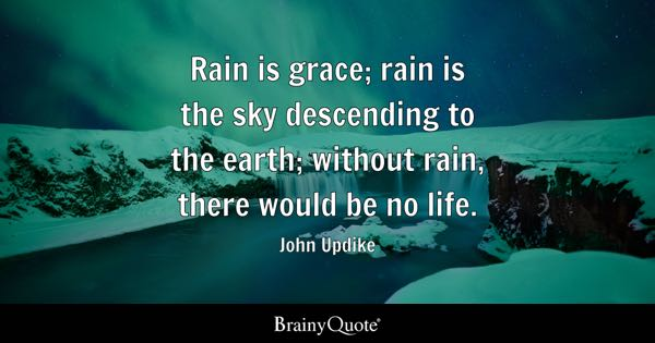 John Updike Rain Is Grace Rain Is The Sky Descending To
