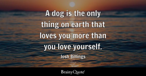 Love Yourself Quotes BrainyQuote Custom Love Yourself Quotes