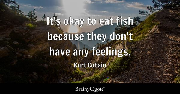 Kurt Cobain Eat My Kids For Food