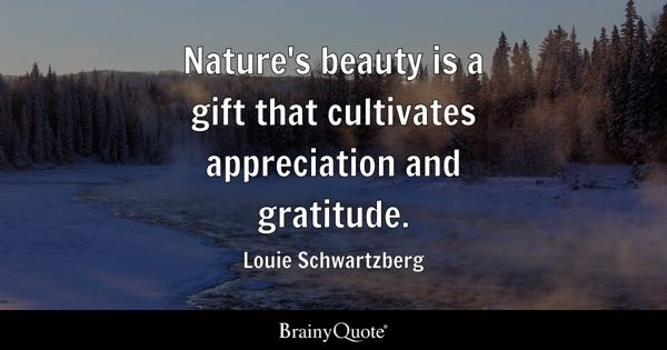 Appreciation Quotes BrainyQuote Custom Quotes About Appreciating Life