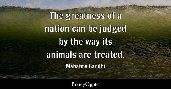 The Greatness Of A Nation Can Be Judged By Way Its Animals Are Treated