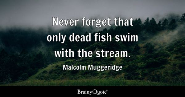 Never forget that only dead fish swim with the stream. - Malcolm Muggeridge