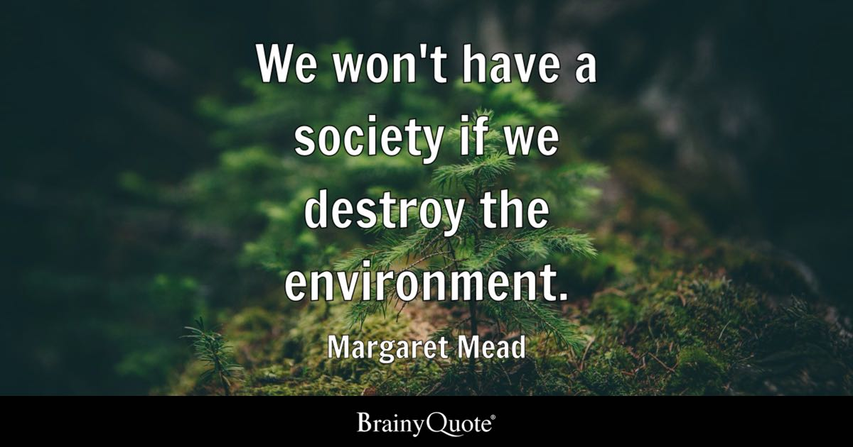 Essay on Environment – Our Responsibility