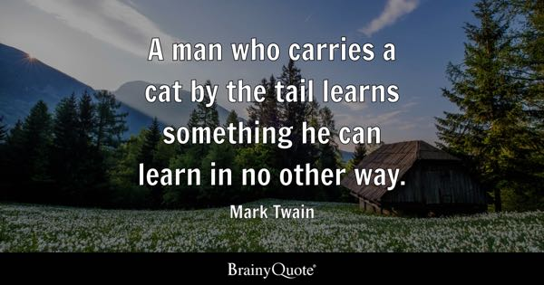 A man who carries a cat by the tail learns something he can learn in no other way. - Mark Twain