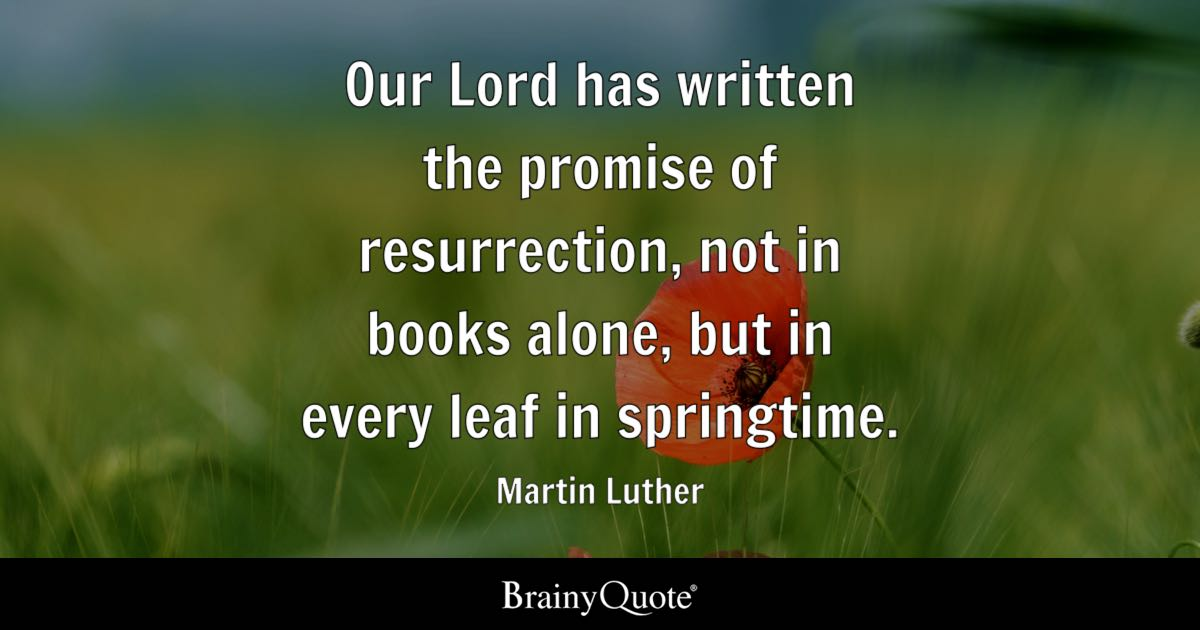Martin Luther Quotes Brainyquote