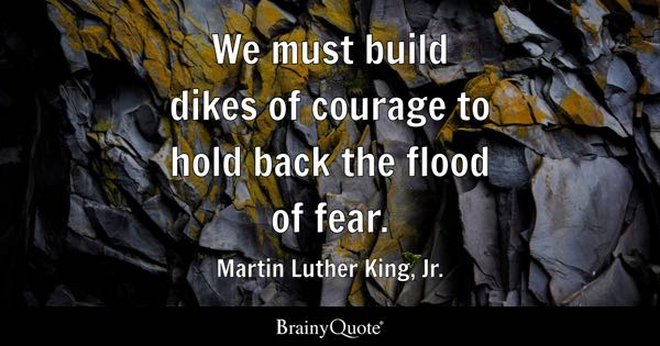 We must build dikes of courage to hold back the flood of fear. - Martin Luther King, Jr.
