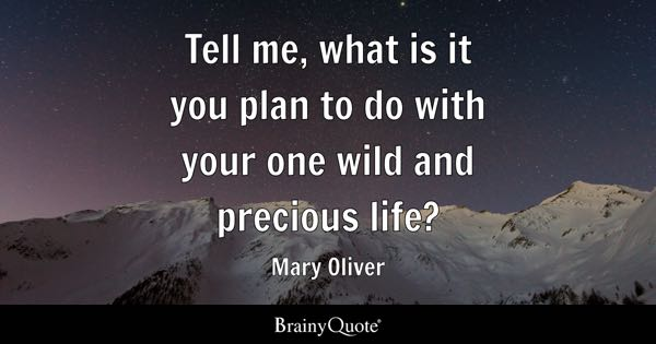 Mary Oliver Quotes Brainyquote