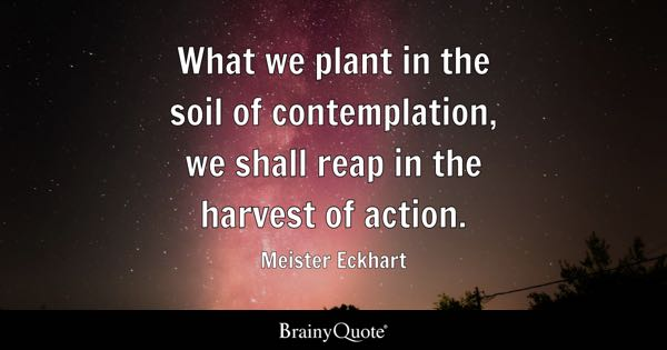 Reap What You Sow Quotes Simple Reap Quotes  Brainyquote