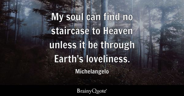 My soul can find no staircase to Heaven unless it be through Earth's loveliness. - Michelangelo