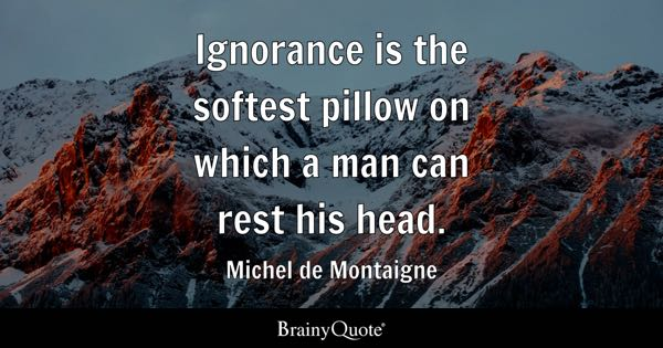 Ignorance is the softest pillow on which a man can rest his head. - Michel de Montaigne