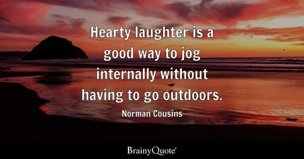 Image result for norman cousins