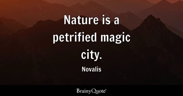 Nature is a petrified magic city. - Novalis
