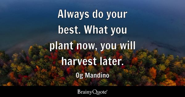 Plant Quotes. Always Do Your Best. What You Plant Now, You Will Harvest  Later.