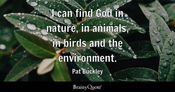 I can find God in nature, in animals, in birds and the environment. - Pat Buckley