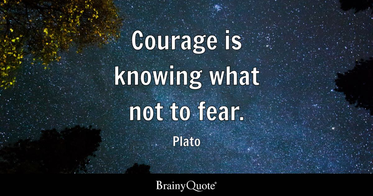 Fear Quotes Amazing Courage Is Knowing What Not To Fear Plato  Brainyquote