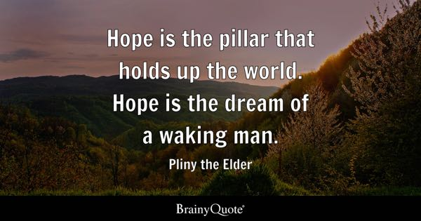 Hope is the pillar that holds up the world. Hope is the dream of a waking man. - Pliny the Elder