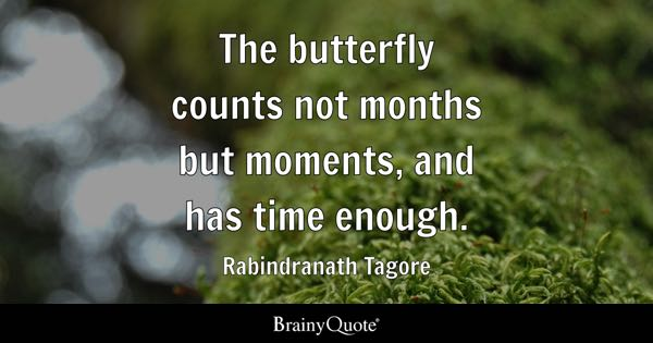 Butterfly Quotes Brainyquote
