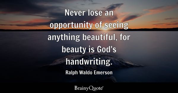 Image result for see the beauty quotes