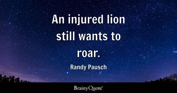 Lion Quotes Brainyquote