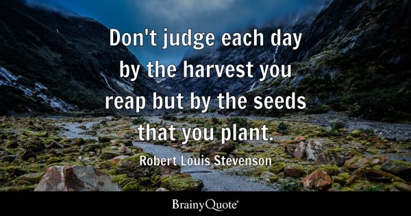 Quotes About Planting Seeds For Life Classy Seeds Quotes  Brainyquote