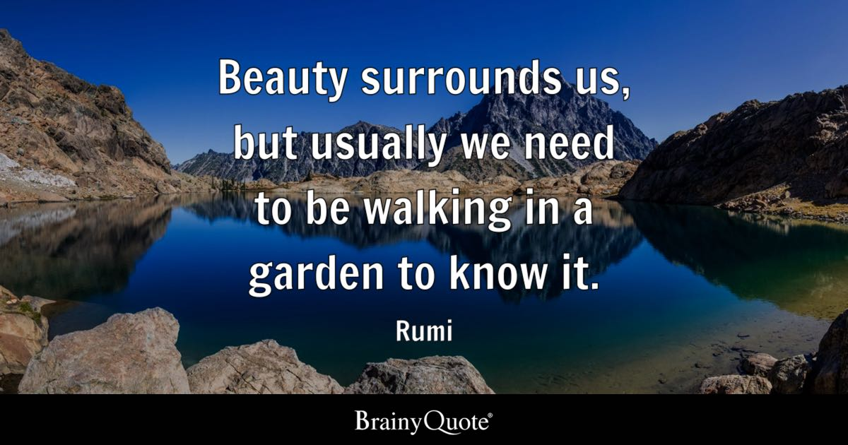 Rumi Quotes On Life Gorgeous Rumi Quotes  Brainyquote